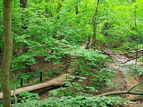 Forest Park Nature Center ~ 450 acre nature center and preserve with seven miles of hiking trails (Peoria, Illinois)