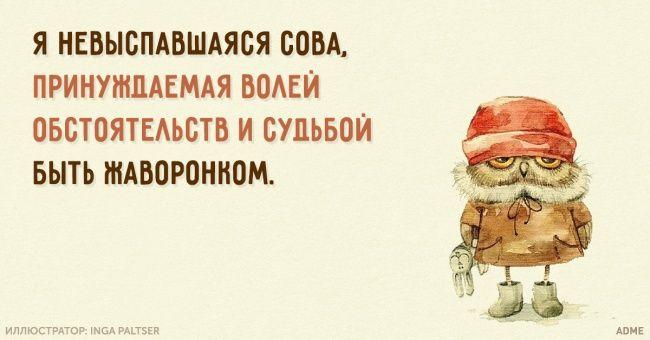 http://www.adme.ru/cards/ya-nevyspavshayasya-sova-964810/