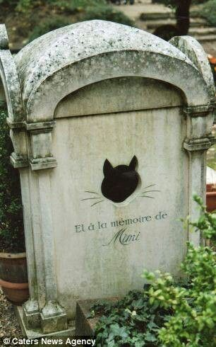 Pet cemetery in paris