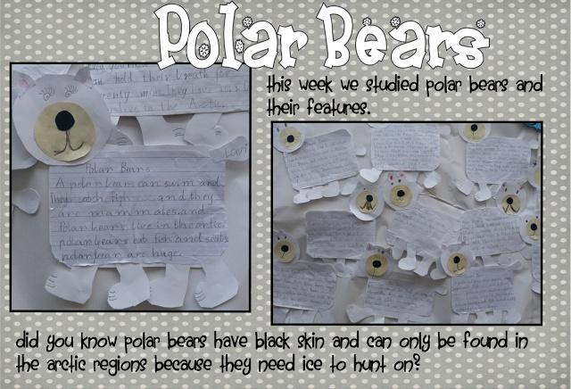 Love the Polar Bear