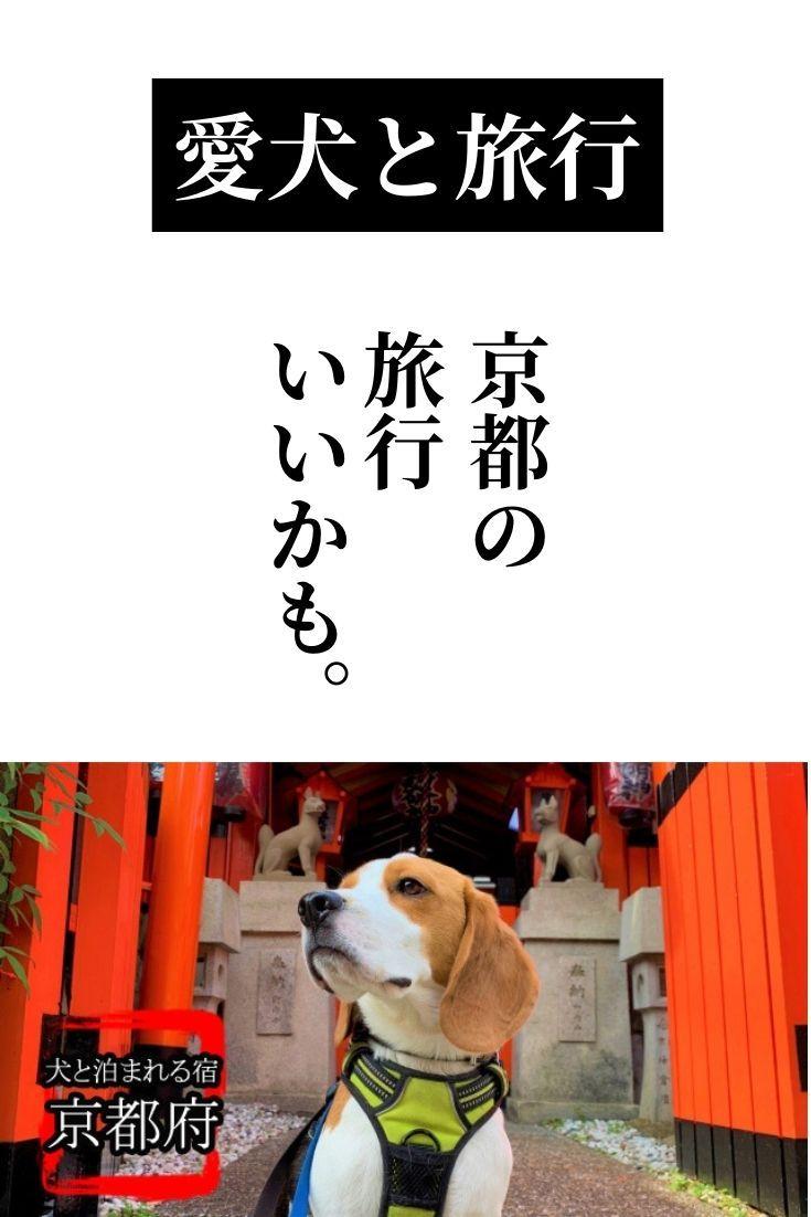 おすすめ旅行 関西 京都 愛犬と泊まる宿 飼い主も楽しむ9宿 2021 旅行 関西 旅行 京都