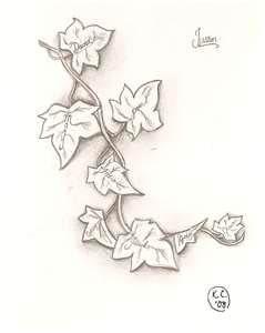 Ivy Climbs Runes Tattoo Design By 2face On Deviantart Images