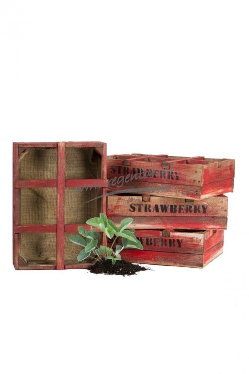 Strawberry kweekkist 6 vaks - Webshop - Regenton.nl