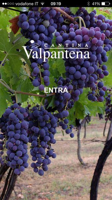 Client: Cantine Valpantena