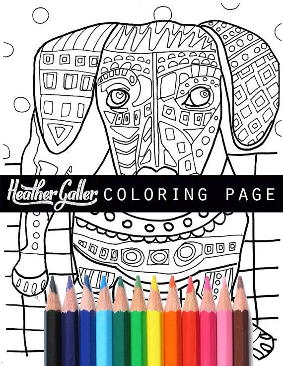today dachshund coloring pages adult art coloring book dogs by heather galler printable instant download - Dachshund Coloring Pages Print
