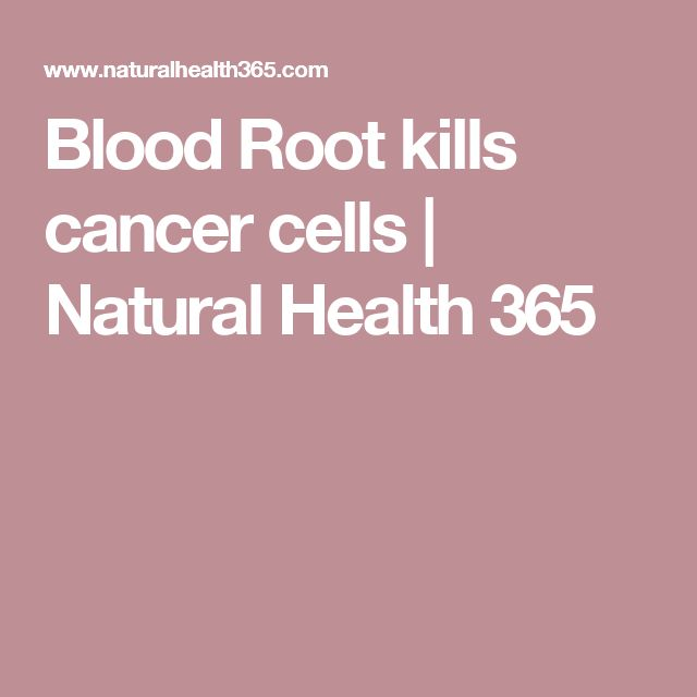 1000 Ideas About Cancer Cells On Pinterest Artemisia