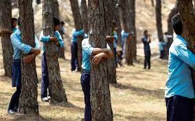 Image result for people hugging trees