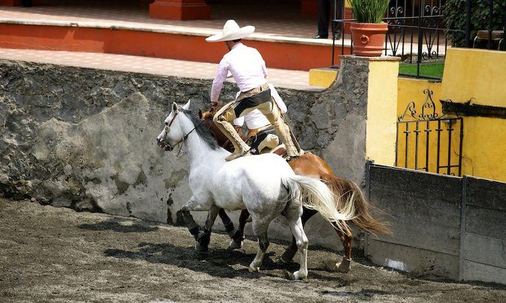 Paso de la muerte pass of death charreria the art for Sillas para caballos