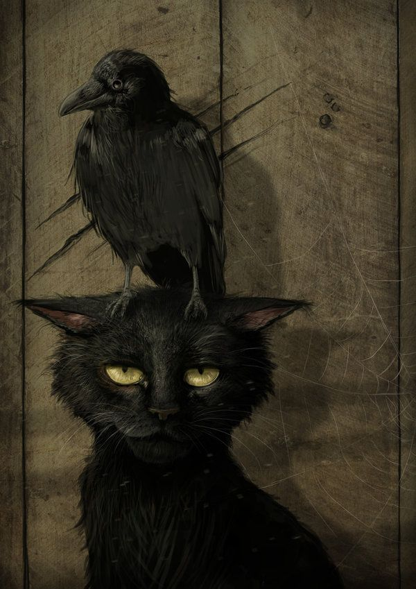 I know this is dark and gothic but it makes me smile. The cat's expression is priceless.The Raven and the Cat by *jerry8448