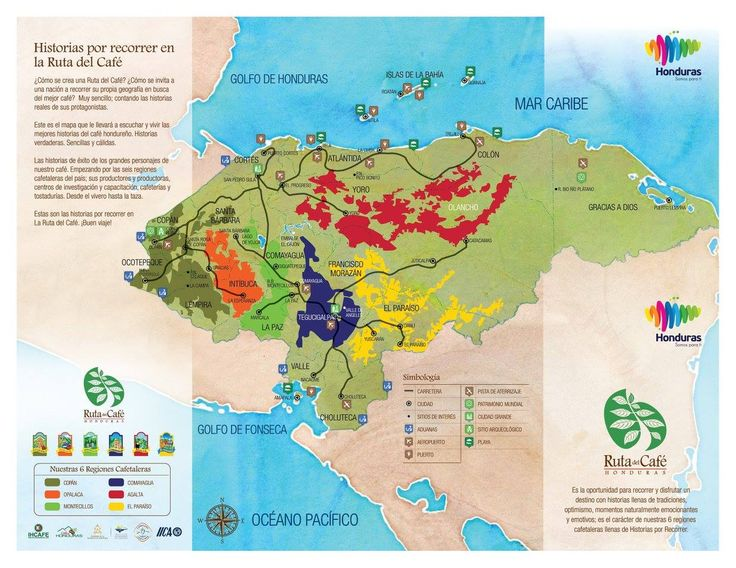 REGIONES DE #CAFE #káva