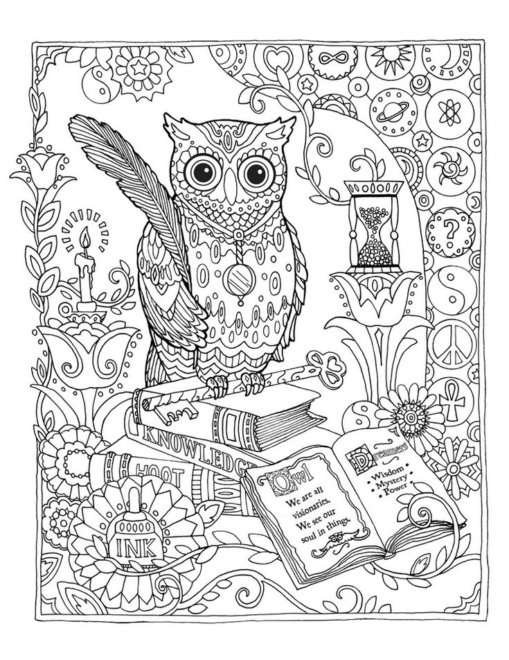 Creative Haven Owls Coloring Book By Marjorie Sarnat Library Owl