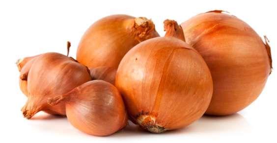 10 maneiras interessantes de se usar cebola, tanto na cura quanto na limpeza…