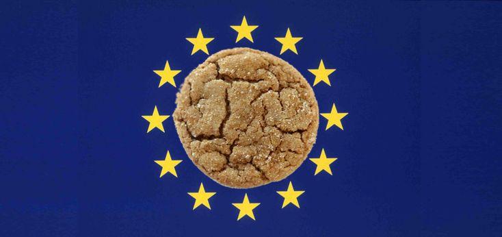 Tutorial: normare un sito internet ai fini della legge del parlamento Europeo o EU Cookie Law, per disciplinare l'uso dei cookie nei siti internet in Italia