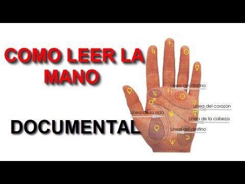 Cómo Leer La Mano : Las lineas, La forma, Los Montes y Su Significado (D...