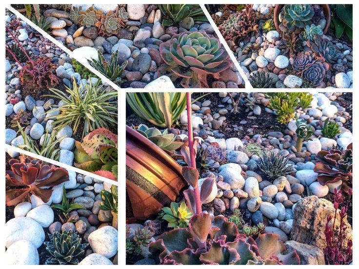 My own garden :)