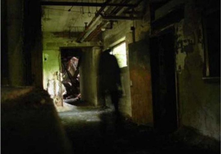 17 Best ideas about Haunted Hospital on Pinterest | A ...