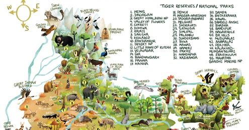115 animals, 46 biodiversity hotspots, one giant ... on map of india islands, map of india china, map of india maps, map of india tigers, map of india architecture, map of india politics, map of india cattle, map of india rivers, map of india independence, map of india parks, map of india jungles, map of india range, map of india history, map of india africa, map of india natural resources, map of india landscape, map of india food, map of india waterways, map of india states, map of india sea,