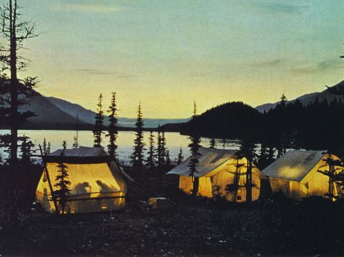 lake campingFavorite Places, Camping, Night Lights, Wonder Places, Outdoor Fun, Families Camps, Lakes, Tents Camps, Happy Campers