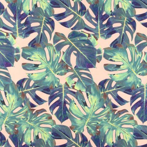 Percale, Melon/Blau/Grün Fingerfilodendr