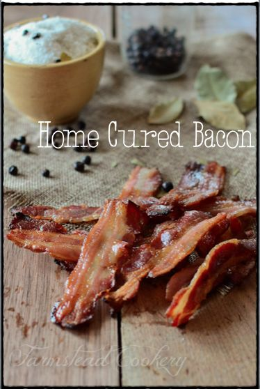 The Best Homemade Cured & Smoked Bacon- SO much better than store bought & so easy  to do! | www.farmsteadcookery.com