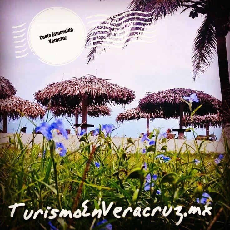 #CostaEsmeralda #Veracruz un lugar mágico a la orilla del #mar http://www.turismoenveracruz.mx