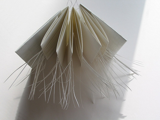 Sarah Mitchell, Grass Book