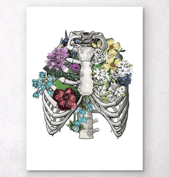 Beautiful art print showing a human rib cage. Perfect gift for doctors and medical students.