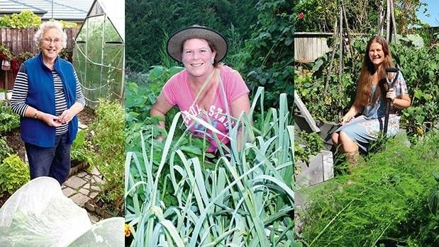 How to save thousands growing your own fruit and veg.