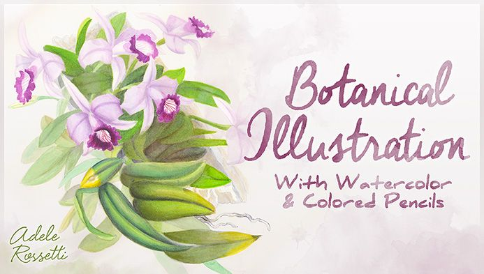 Botanical Illustration With Watercolor and Colored Pencils - Explore the techniques behind beautiful botanical illustrations as you learn to draw and paint a gorgeous orchid with watercolors and colored pencil.  - via @Craftsy