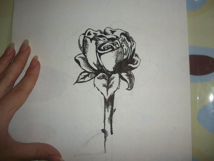 Single Rose Tattoo Design - Best Home Decorating Ideas