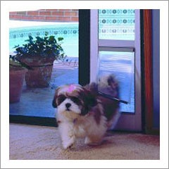 PetSquared.com   Dog Doors U003e Ideal Fast Fit Patio Dog Door   Small