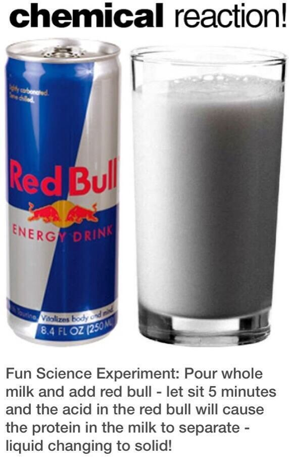 Looking for a science experiment that will blow them away? What about separating proteins with Red Bull and milk!