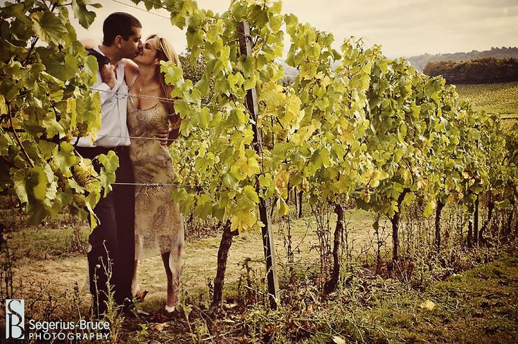 Vineyard visit in Italy....cooking classes, wine/food tasting, romance and the making of good memories!