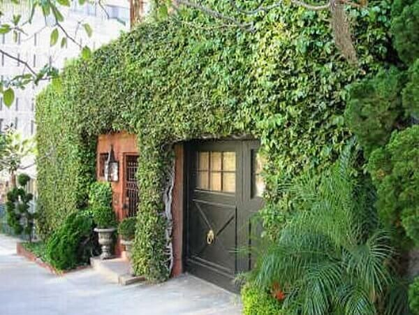 A living wall, or green wall, is a gorgeous display of life that helps to keep buildings cool.