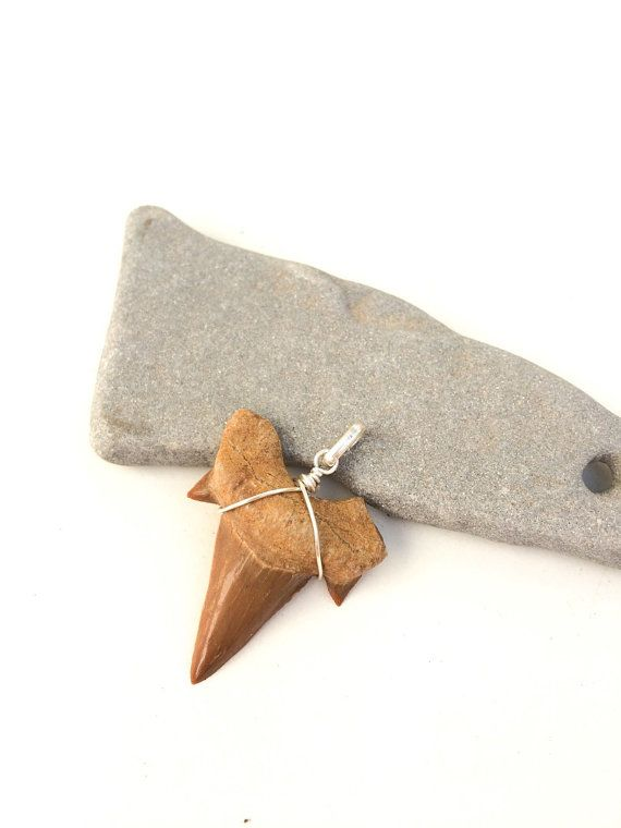 Shark tooth pendant Shark tooth necklace Men's by SPIRALICA