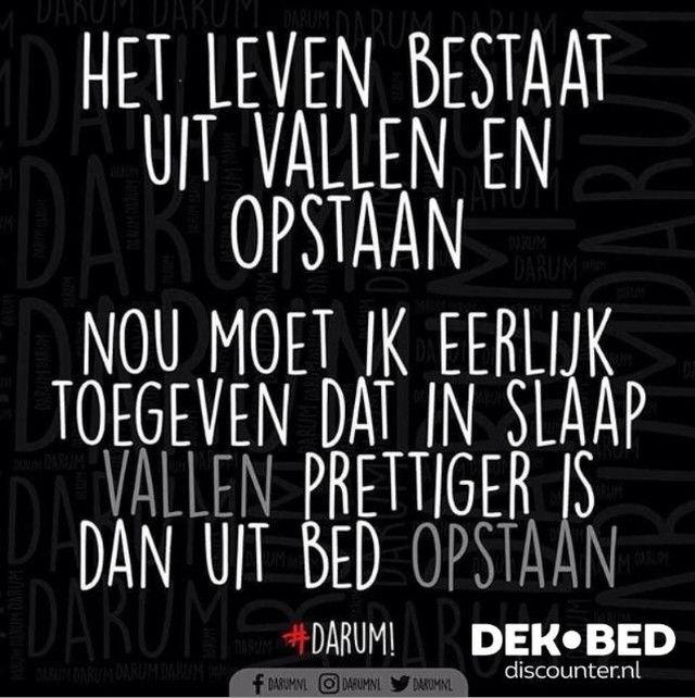 """dekbed-discounter.nl on Instagram: """"Goedemorgen! 😴  #DEKBEDDISCOUNTER #DARUM"""" – Irene Bos"""