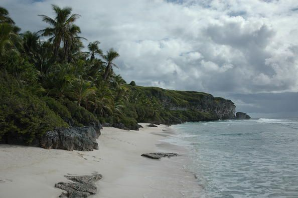 Henderson Island, which lies in the eastern South Pacific, is one of the few atolls in the world whose ecology has been practically untouched by a human presence. Its isolated location provides the ideal context for studying the dynamics of insular evolution and natural selection. It is particularly notable for the 10 plants and four land birds that are endemic to the island.