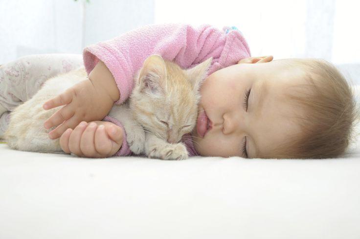 Objetivo: dormir como un bebé.