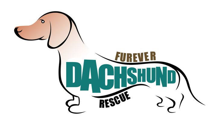 Furever Dachshund Rescue is a non-profit organization that was created to rescue, rehabilitate and re-home abandoned, neglected and stray dachshunds. Fosters and Adoptees needed! www.fureverdachshundrescue.org