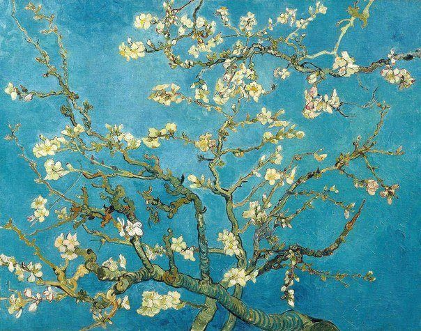 Vincent Van Gogh To see the full gallery http://beautifulstuff.altervista.org/vincent-van-gogh/