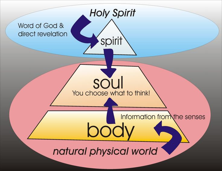 Comparing Spirit Soul and Body | The Prophet Speaks: Spirit, Soul and Body