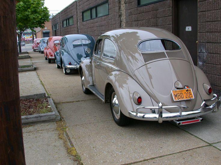 Old Beetles #vintage #volkswagens
