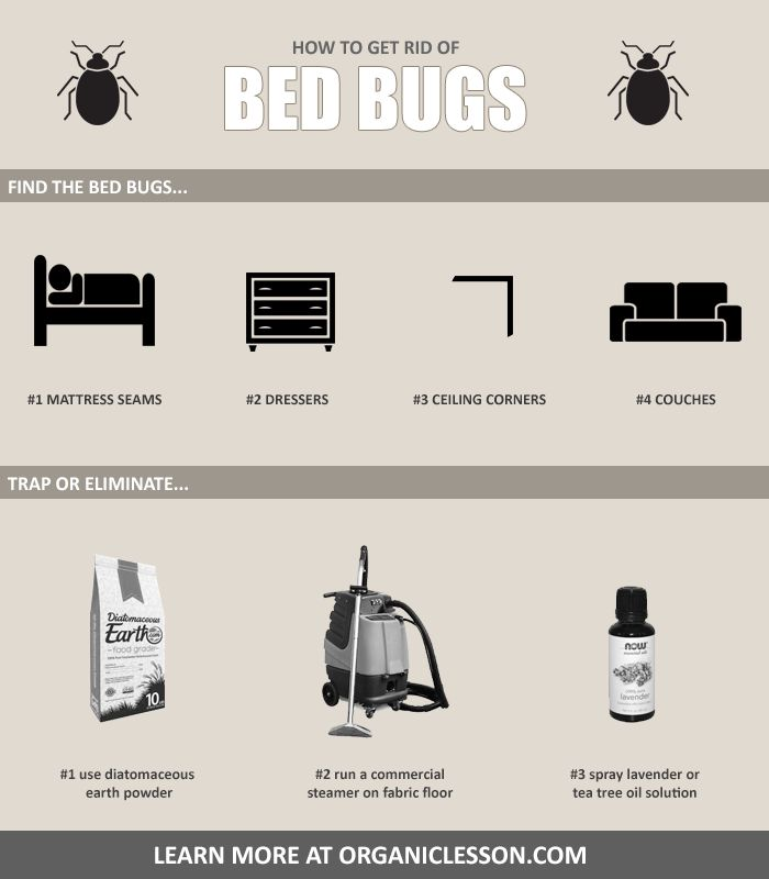Here are some tips on finding and getting rid of bed bugs. Take action before it's too late.