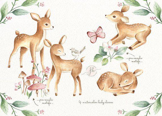 Deer watercolor. Baby clipart woodland nursery