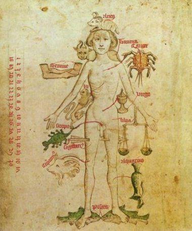 Corrispondenze dei Segni sul corpo umano.