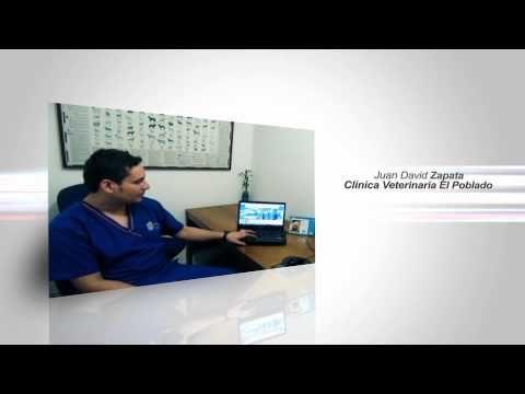 RenderWeb - Hablan nuestros Clientes (CVP Medellín)  Somos Experiencia 2.0