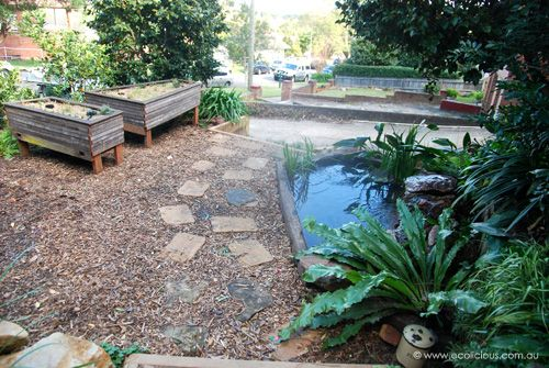 aquaponics garden design how to diy aquaponics the how to diy guide on building your very
