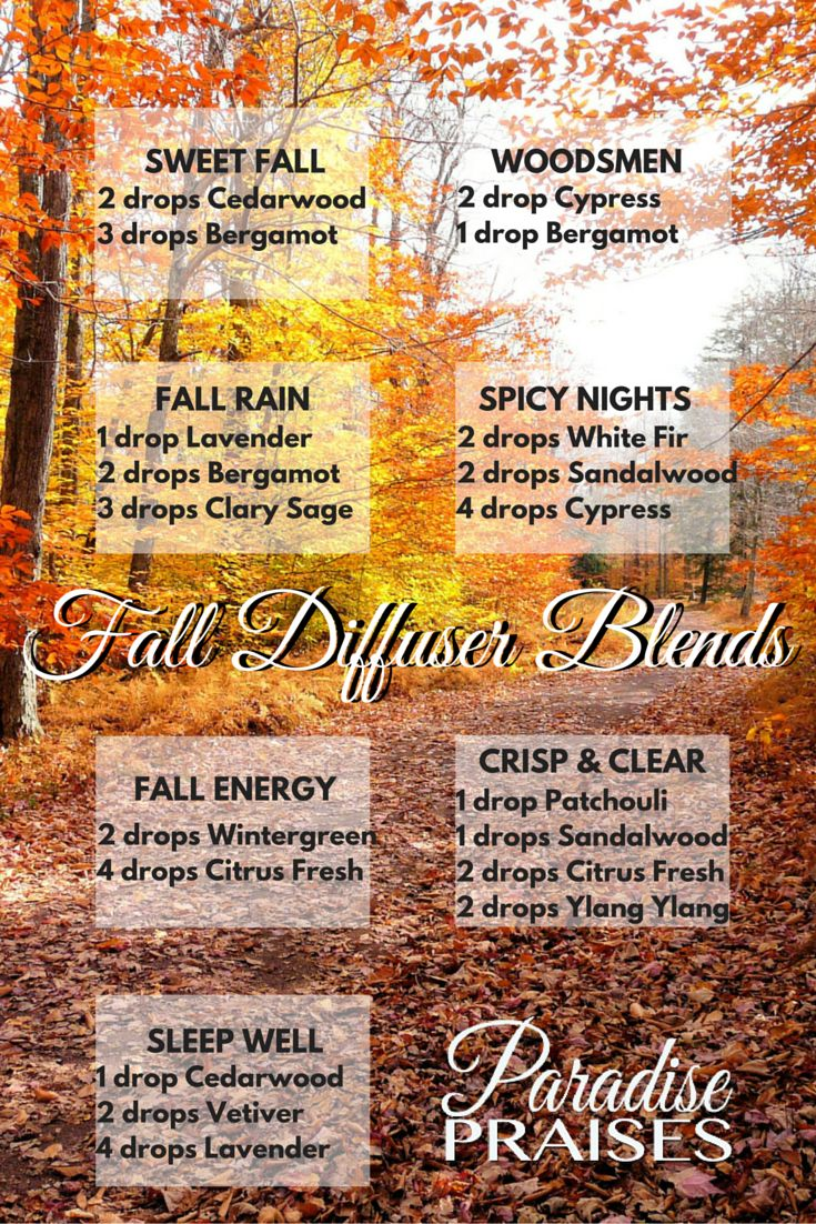 Essential Oil Diffuser Blends for Autumn and Fall. Crisp, clean and woodsy…