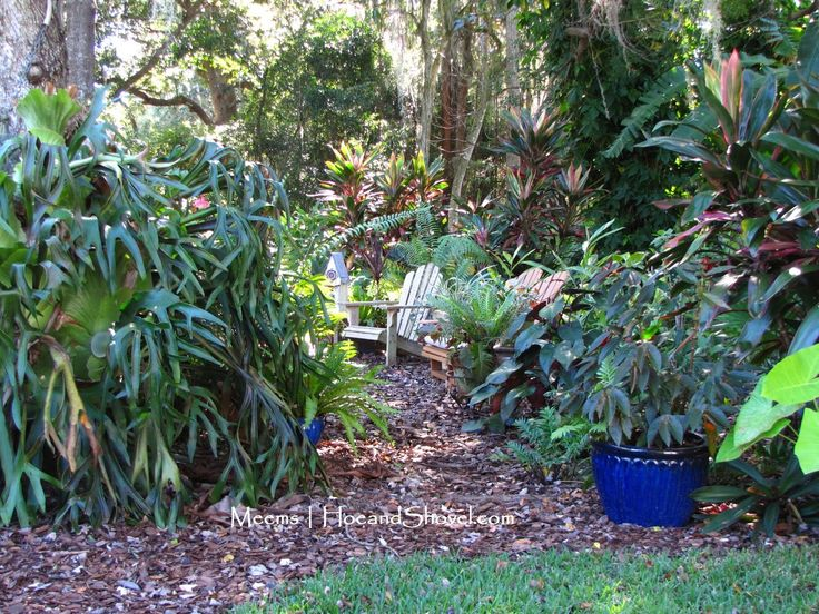 backyard landscaping ideas 4276 best tropical design images on tropical 12715