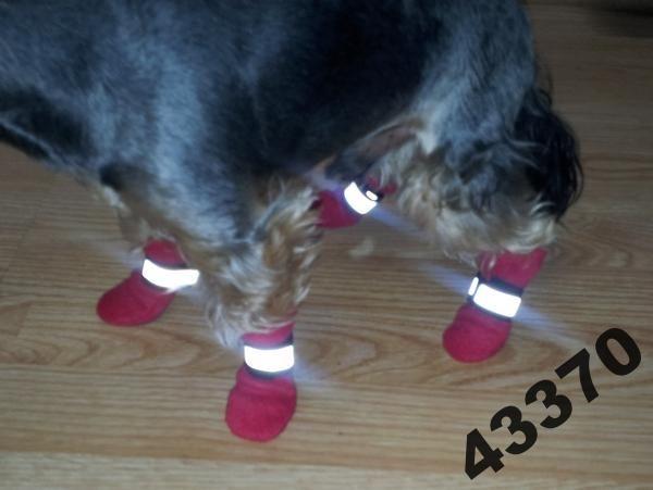 Pelo**Buty dla psa SKARPETKI polar jesień-zima rS